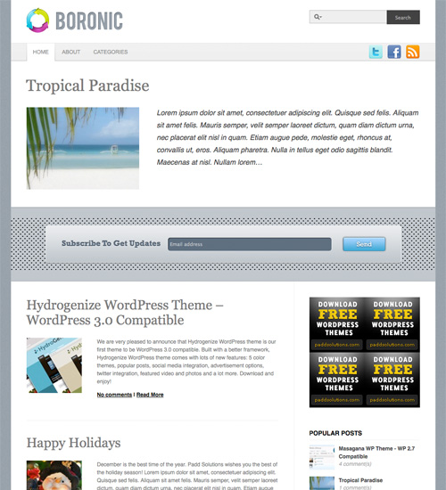 boronic 46-free-wordpress-3.0-themes